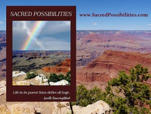 Sacred Possibilities Book Banner